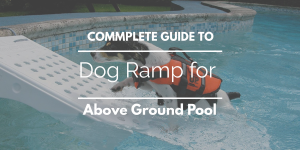 Best Dog Ramp for Above Ground Pool